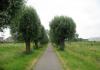 Gemeentegrens_Arnhem_-_Oosterbeek_-_Arnhem_Schuytgraaf_1271