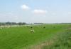 Graafschapspad_Doesburg_-_Brummen_1607