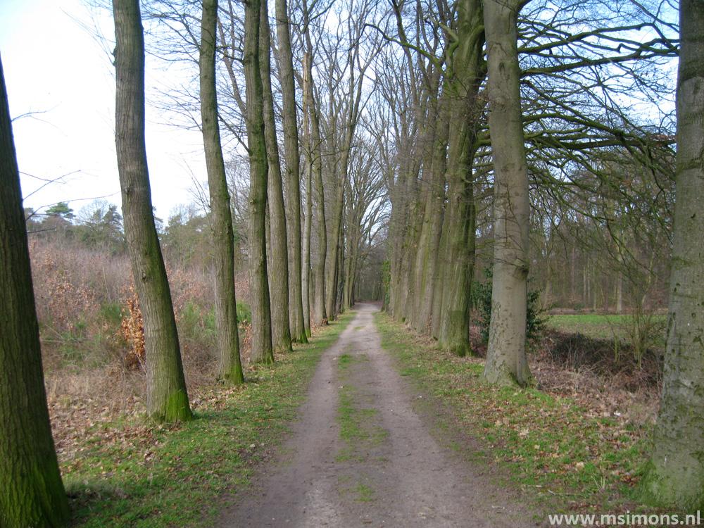 graafschapspad_doetinchem_-_doesburg_9528