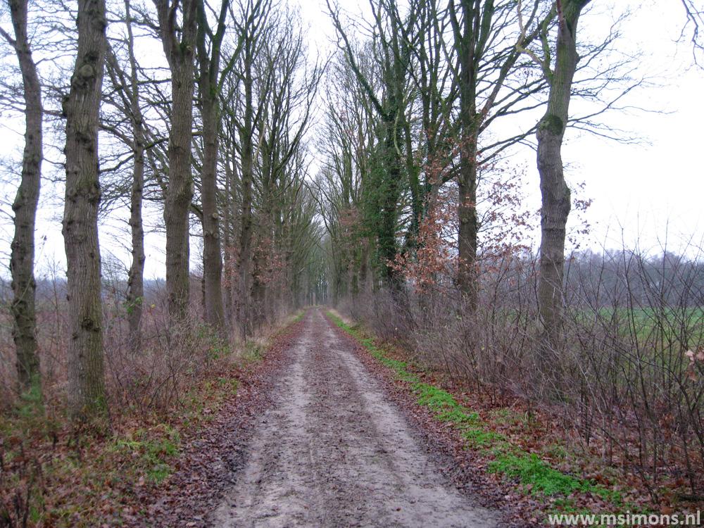 graafschapspad_-_marienvelde_-_doetinchem_9508