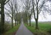 Groenendijk_en_Haren_0108