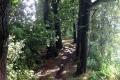 Grote Rivierenpad: Bergambacht - Ameide