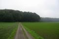 Grote Rivierenpad: Kranenburg - Kleef