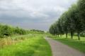 Grote Rivierenpad: Maasland - Geervliet