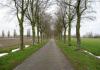 Haps_-_Wandelroute_Haps,_Ossenbroek_en_Nieuwenhof_0414