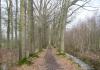 Haps_-_Wandelroute_Haps,_Ossenbroek_en_Nieuwenhof_0418