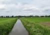 helmond_-_langs_brabantse_beken_7401