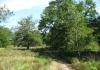 herkenbosch-nationaalparkdemeinweg9646