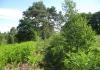 herkenbosch-nationaalparkdemeinweg9649