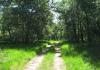 herkenbosch-nationaalparkdemeinweg9655