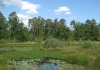 herkenbosch-nationaalparkdemeinweg9658