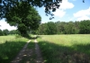 herkenbosch-nationaalparkdemeinweg9659