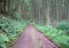 Hillesheim_-_Kylltal_Route_1479