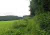 Hillesheim_-_Kylltal_Route_1481