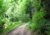 Hillesheim_-_Kylltal_Route_1487
