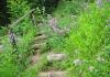 Hillesheim_-_Kylltal_Route_1488