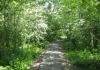 hoorn_-_stadswal_-_julianapark_-_ijsselmeer_en_oude_stad_7384
