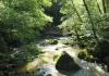 irrel_-_natuurpark_sud_eifel_8535