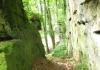 irrel_-_natuurpark_sud_eifel_8539