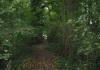 Kerkrade_-_Graaf_Saffenberg_Route_0059