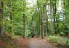Kerkrade_-_Graaf_Saffenberg_Route_0061