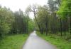 Laag_Soeren_-_Bronstroute_Veluwezoom_1129