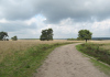 Laag_Soeren_-_Bronstroute_Veluwezoom_1143