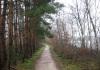 Langenboom_-_Langenboomse_Bossen_en_De_Kuilen_0316