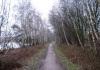 Langenboom_-_Langenboomse_Bossen_en_De_Kuilen_0319