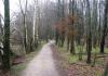 Langenboom_-_Langenboomse_Bossen_en_De_Kuilen_0325