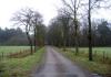 Langenboom_-_Langenboomse_Bossen_en_De_Kuilen_0326