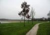 Langenboom_-_Langenboomse_Bossen_en_De_Kuilen_0339