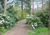 Lochem_-_Wandelen_rondom_kasteel_Ampsen_0928
