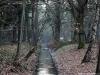 Loenen: Veldhuizen, Veldhuizer Spreng en Loenensche Waterval