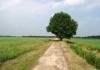 maas_en_peelliniepad_-_overloon_-_oploo_7537