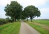 Marikenpad_-_Nijmegen_-_Nederasselt_1675