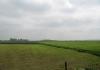 meliskerke_-_historie_en_prachtige_duinen_7251
