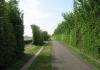 meliskerke_-_historie_en_prachtige_duinen_7259