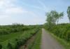 meliskerke_-_historie_en_prachtige_duinen_7260