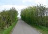 meliskerke_-_historie_en_prachtige_duinen_7276