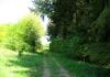 moersdorf_-_geierlay_9157
