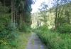 monschau_-_narzissengebiet_monschauer_land_8571