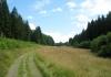 monschau_-_narzissengebiet_monschauer_land_8576