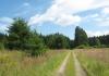 monschau_-_narzissengebiet_monschauer_land_8577