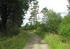 monschau_-_narzissengebiet_monschauer_land_8578
