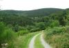 niedersorpe_-_golddorfer-route_8585