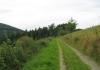 niedersorpe_-_golddorfer-route_8591