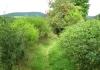 niedersorpe_-_golddorfer-route_8595