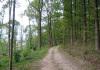Noorbeek_-_Bloedmooi_Altenbroek_0051