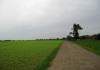 Noorbeek_-_Bloedmooi_Altenbroek_0055